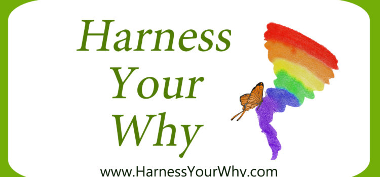 Harness Your Why Intro