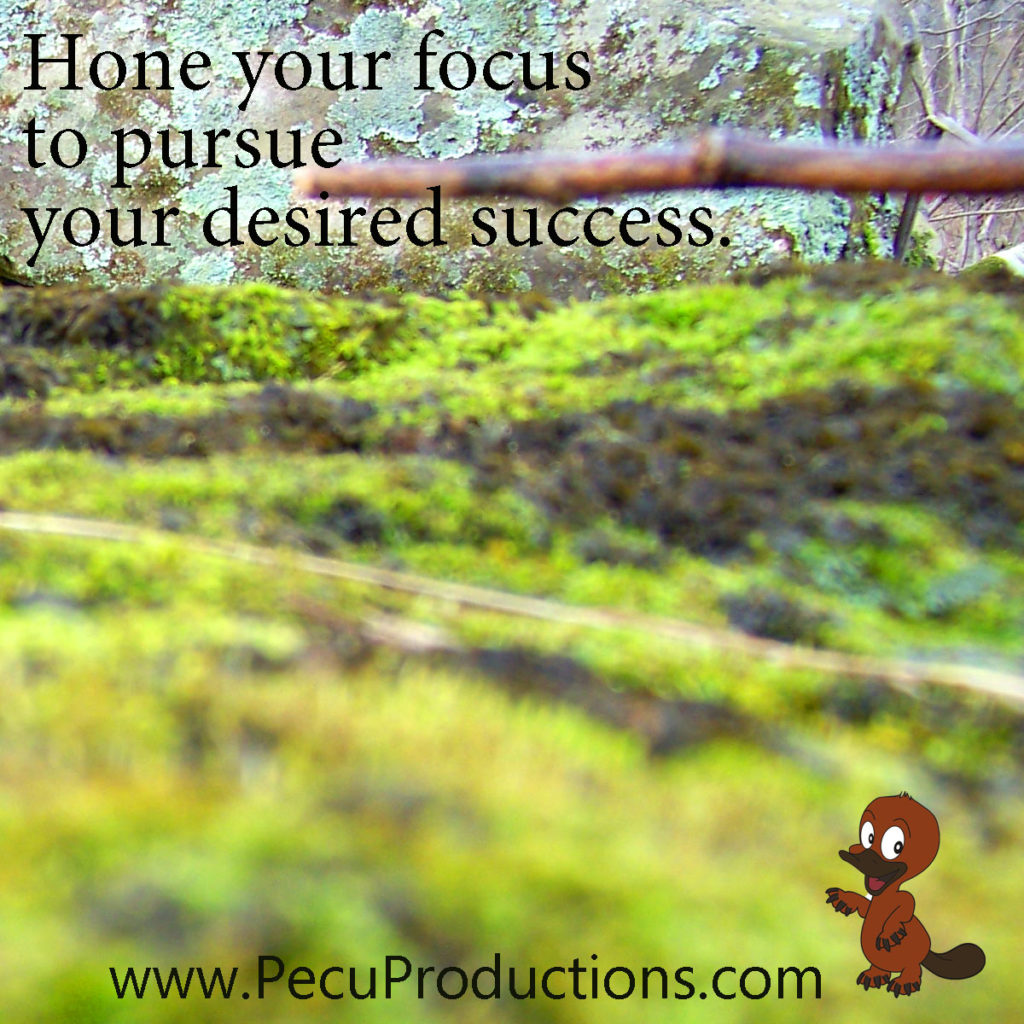 Hone your focus to pursue your desired success with Peculiar Productions